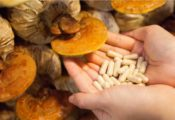 Supplements of mushroom for anxiety and stress relief