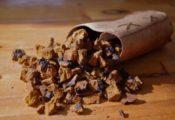 best chaga mushroom powder reviews